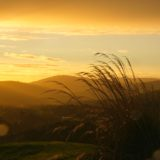 Sunset in Catlins