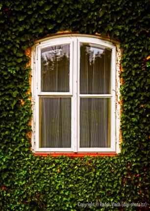 Pod oknem