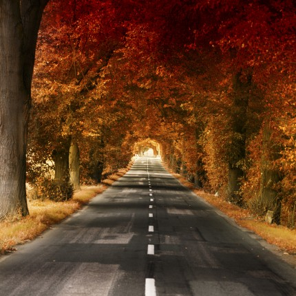 Podzimní vysočinou