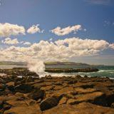 Wild Coast in Catlins